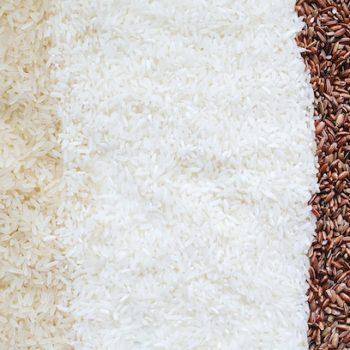 rice-analysis-berlin-laboratory copy